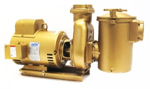 """V40-537 - 5 HP Pump and Motor, 60Hz, 1-phase, 8"""" trap"""
