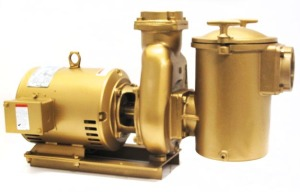 """V40-538 - 5 HP Pump and Motor, 60Hz, 3-phase, 8"""" trap"""