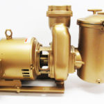 "Martin 500 - 3 HP Pump & Motor, 60Hz, 1-phase, 8"" trap"